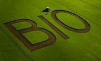 Nuova normativa del biologico, si parte nel 2022